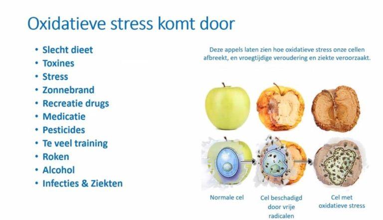 Afbeelding met uitleg over: waardoor ontstaat oxidatieve stress